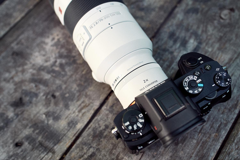 Best canon lens wildlife photography Lenses For Wildlife Photography - Outdoor Photographer