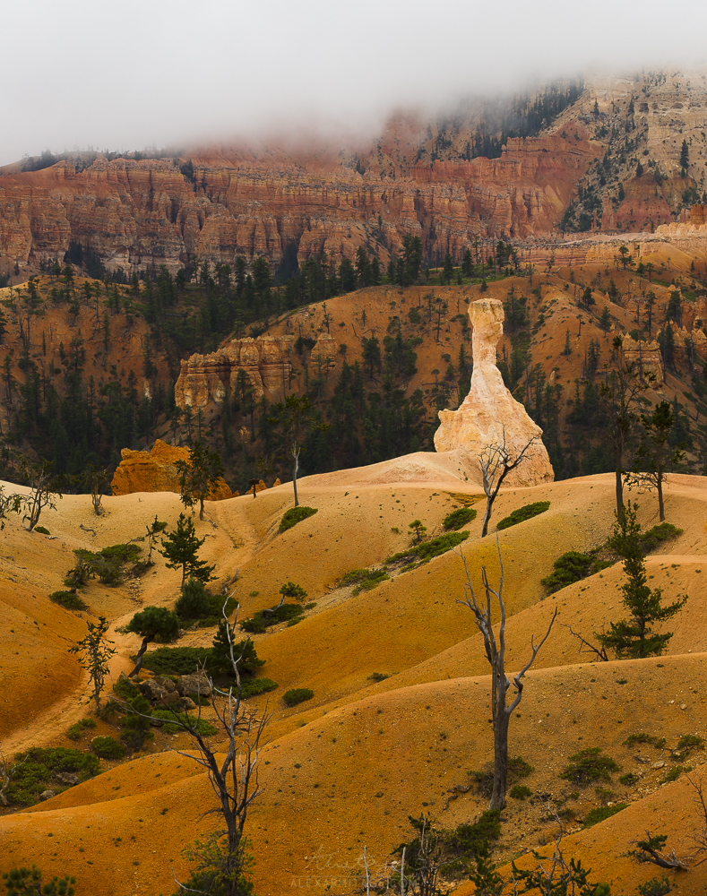 bryce canyon rainy day