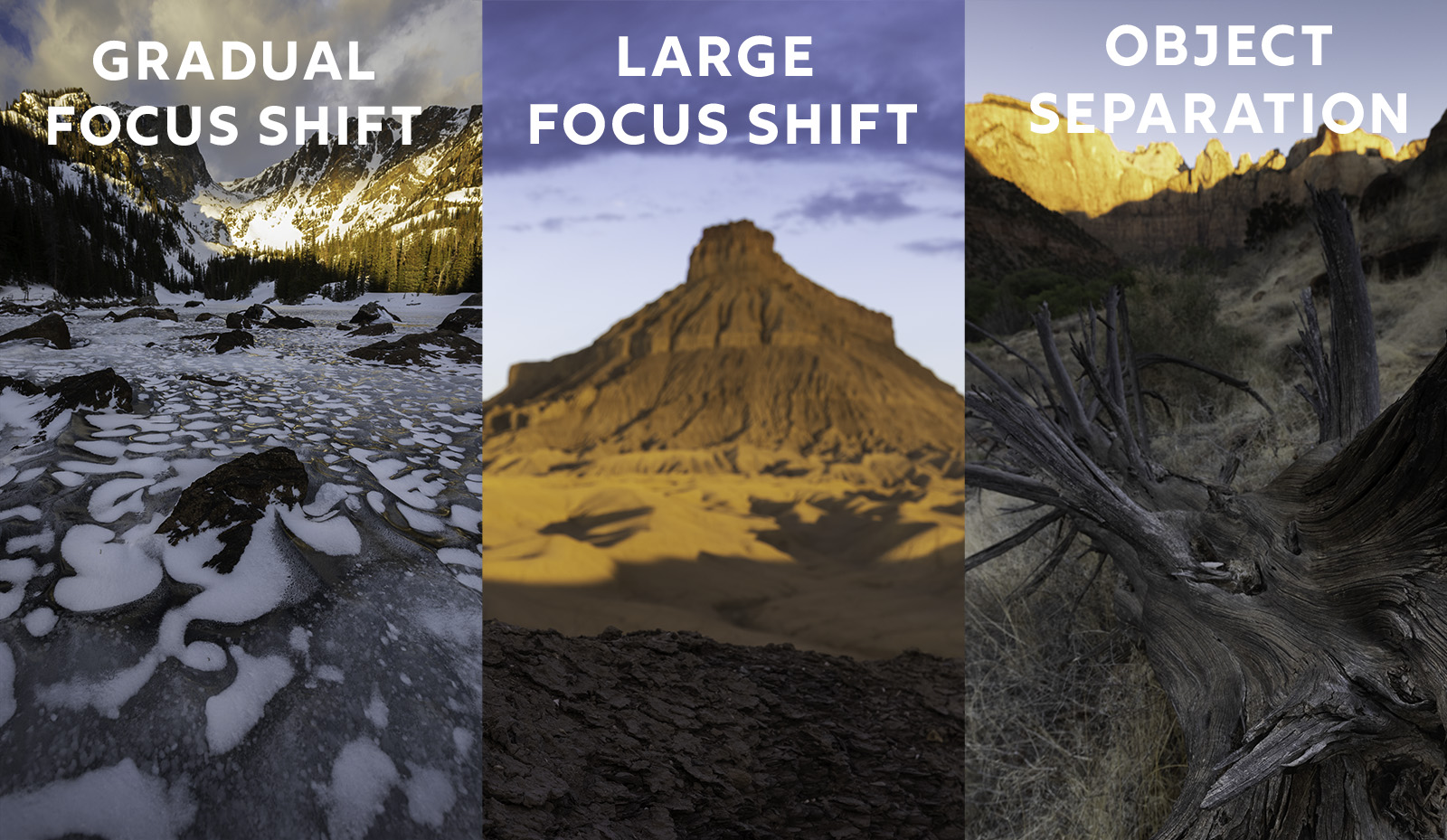How to Focus Stack for Perfect Sharpness From Start to Finish: Part One 1
