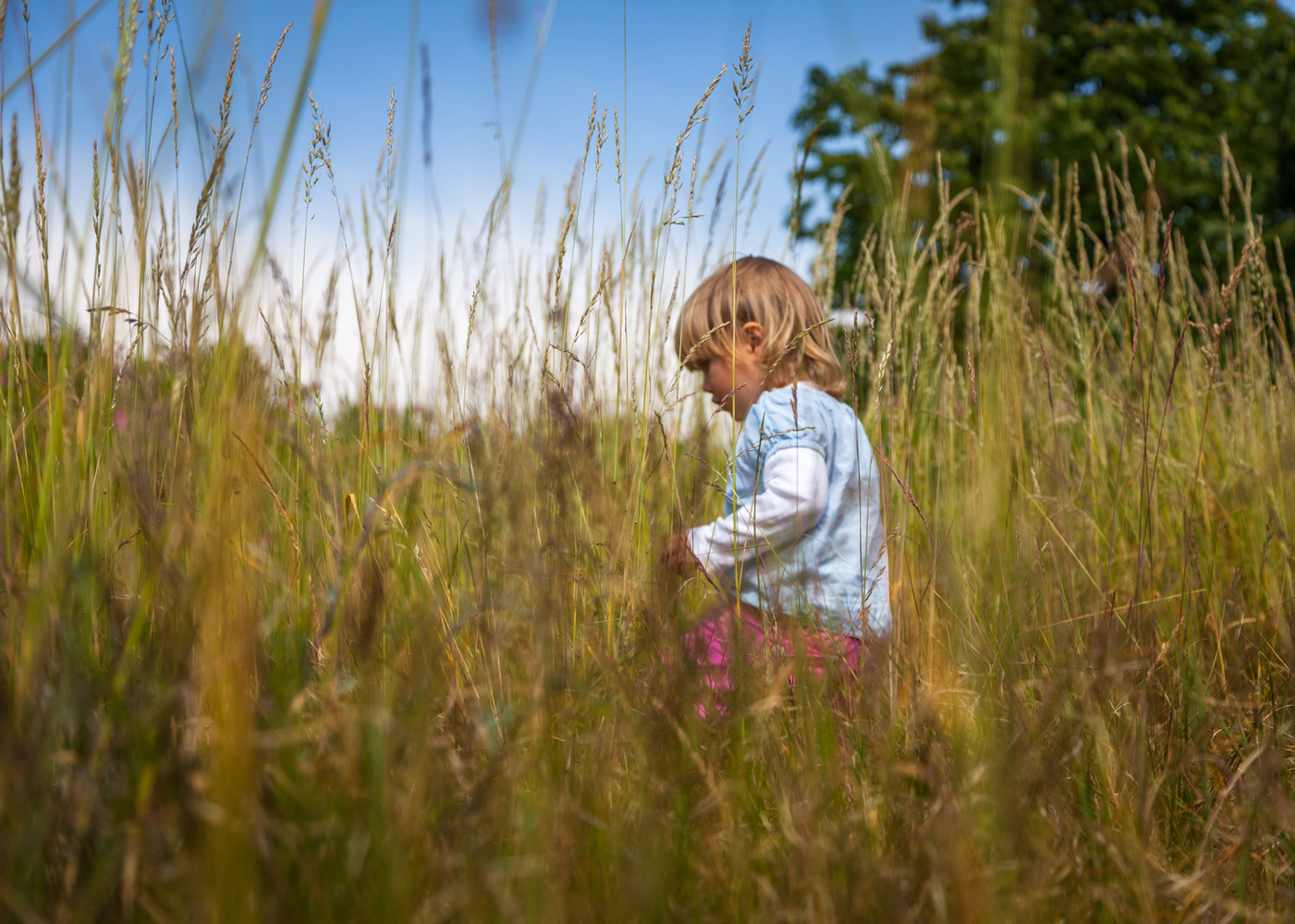 Girl on a meadow by Anders Rosqvist