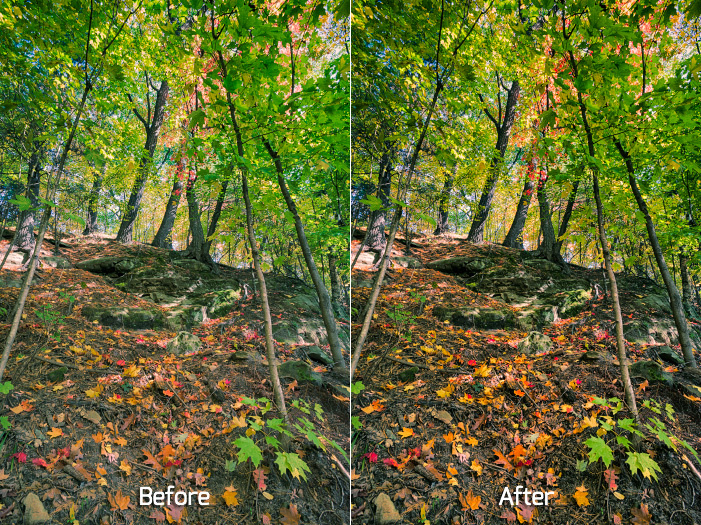 Before and After Using the Bleach Bypass Filter