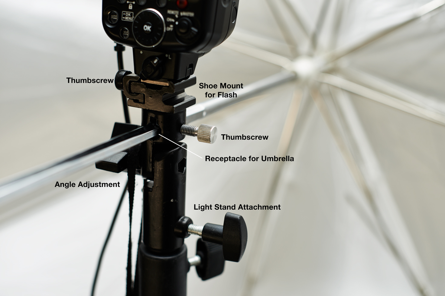 Umbrella 101 For Beginners Bare Flash Vs Shoot Thru Vs Reflective