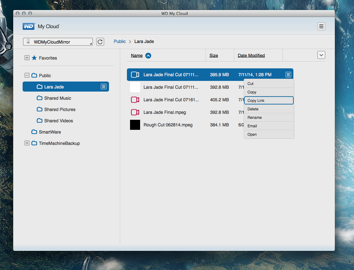 Workflow Review: Backing Up and Delivering Content with WD