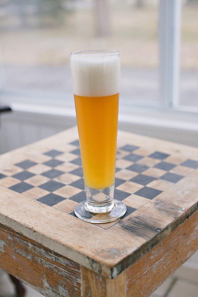 Cream Ale Photo