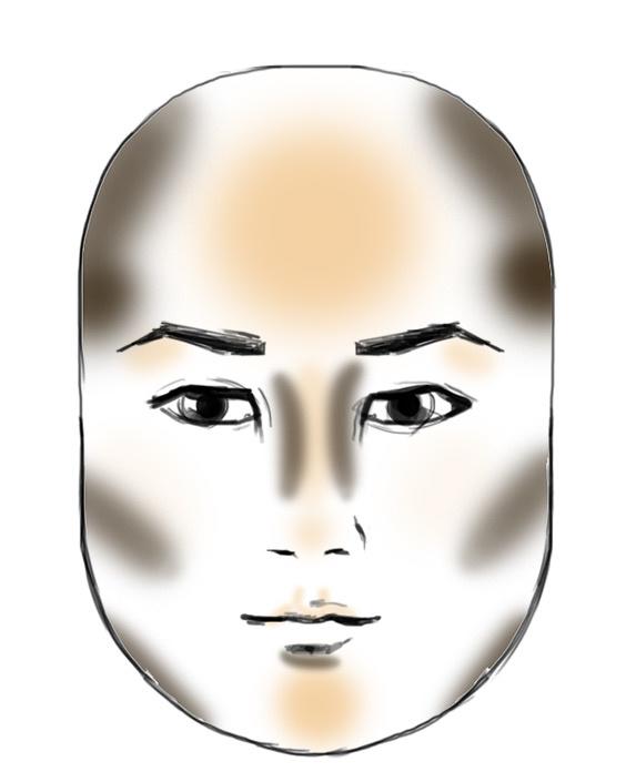 schema to contour a round face