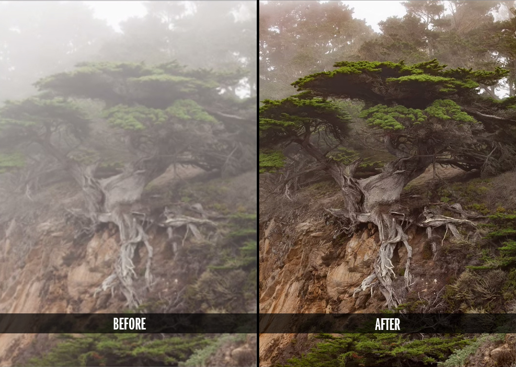 how to turn off updates lightroom