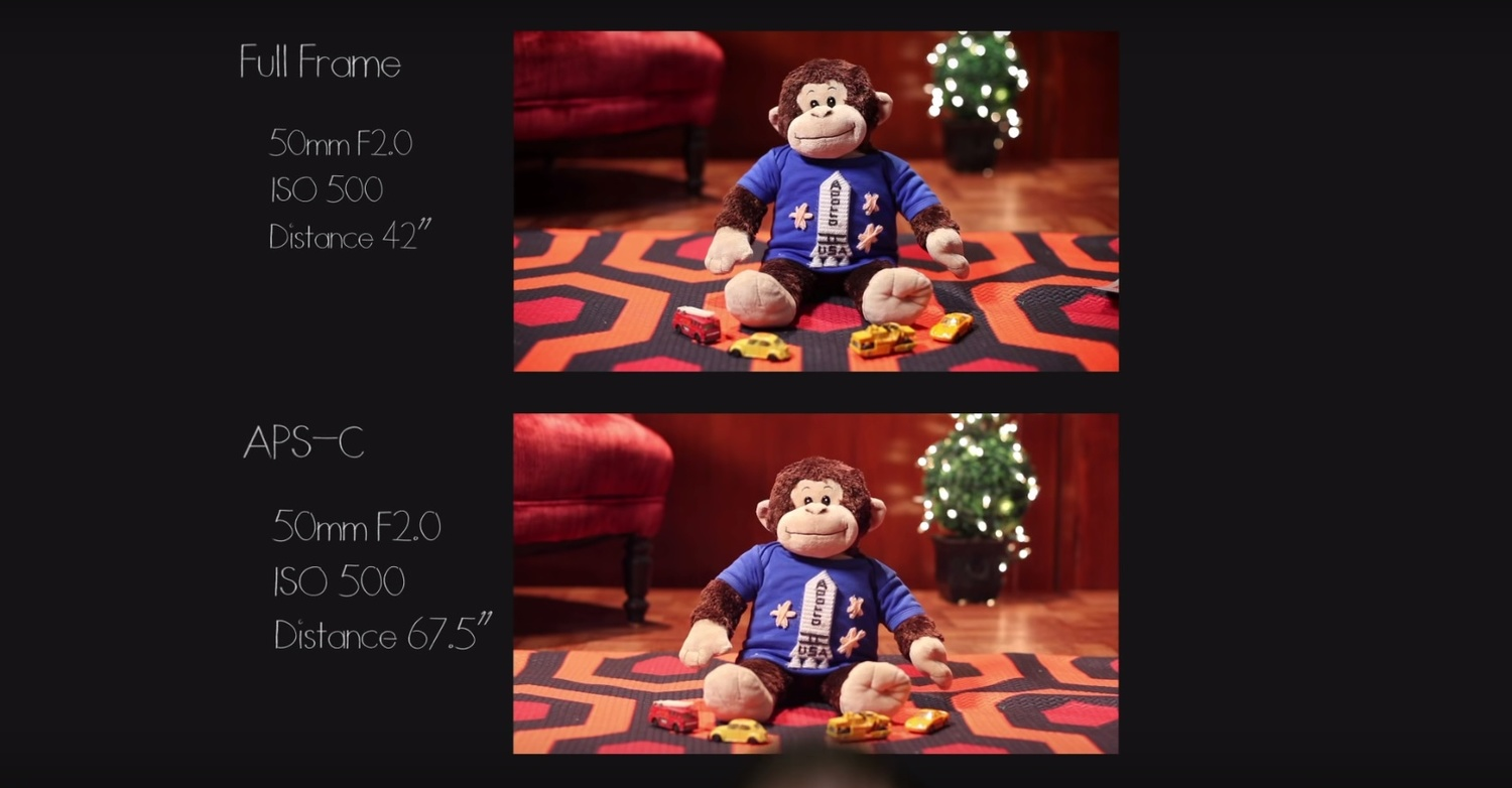 The Smaller the Sensor Size, the Shallower Your Depth of Field ...