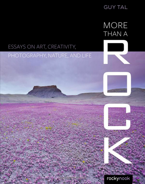 More Than a Rock by Guy Tal Book Cover