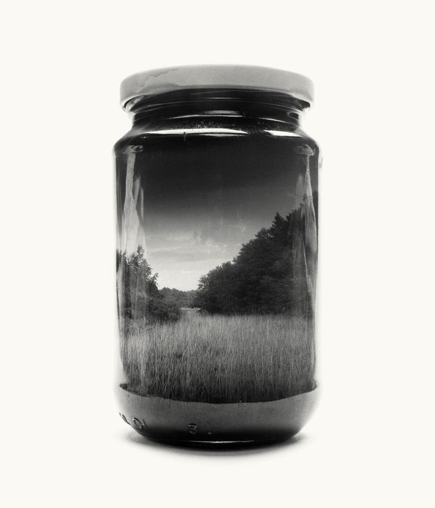 field, forest, jar