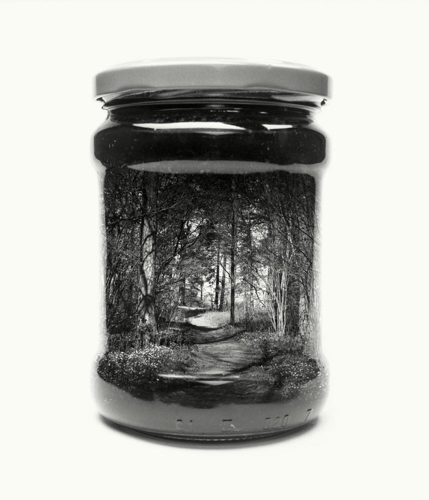 jar, path, forest