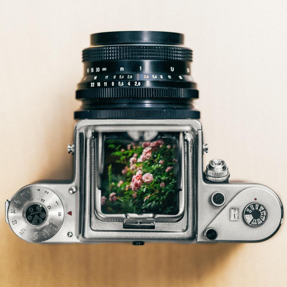 Viewinder of medium format film camera