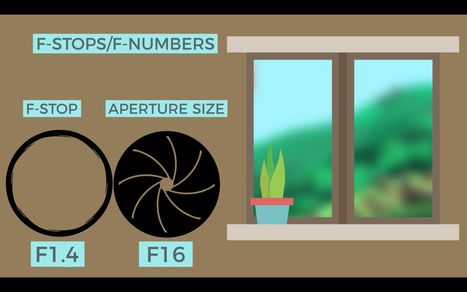 What is Aperture and Other Camera Basics? | Fstoppers