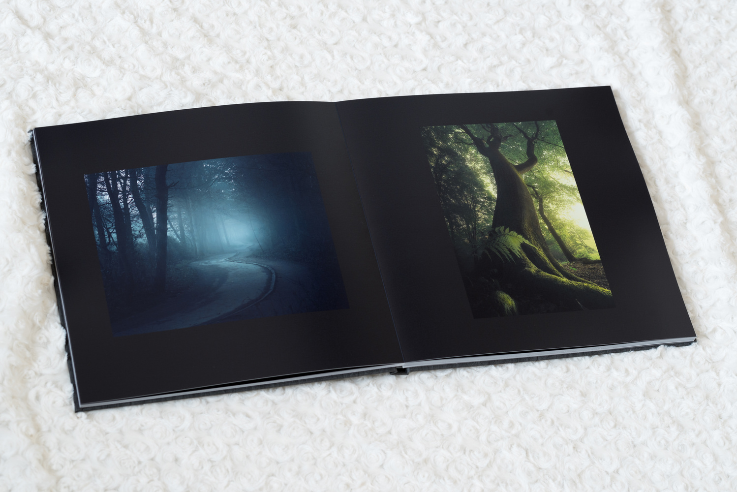 Review: The Saal Digital High-End Photobook for Professional