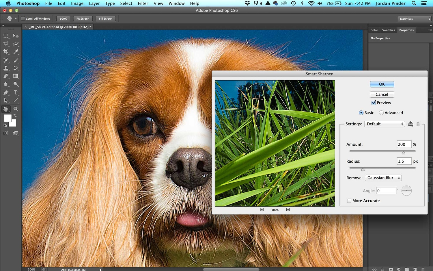 sharpening an image of a spaniel