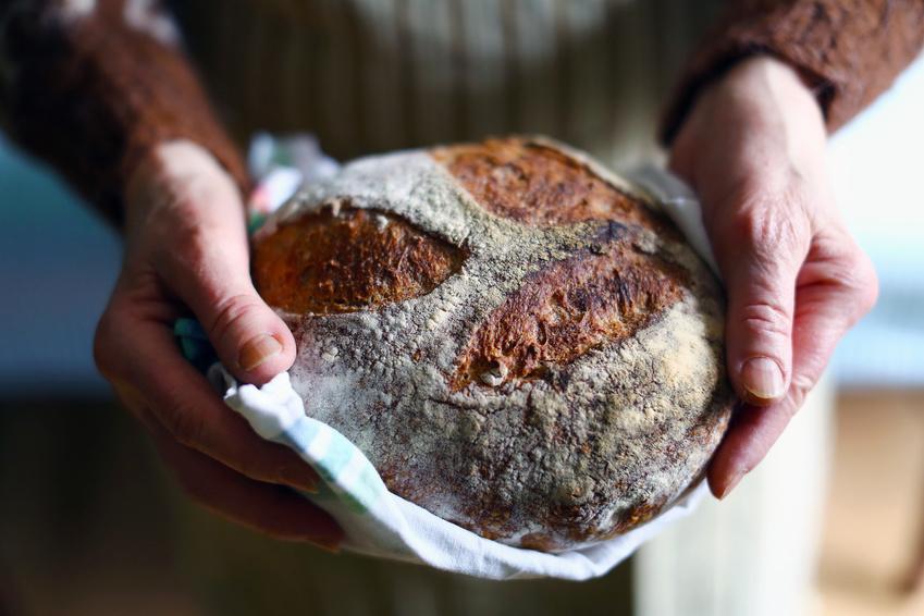 Sourdough bread stock image