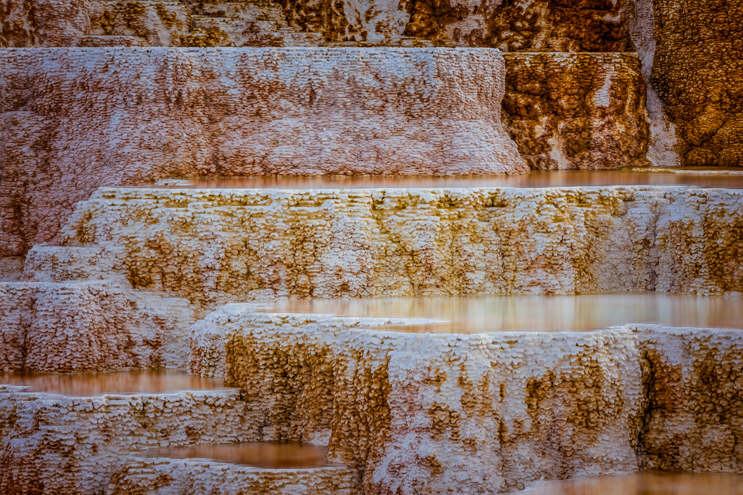 close up shot of water formations at mammoth hot springs