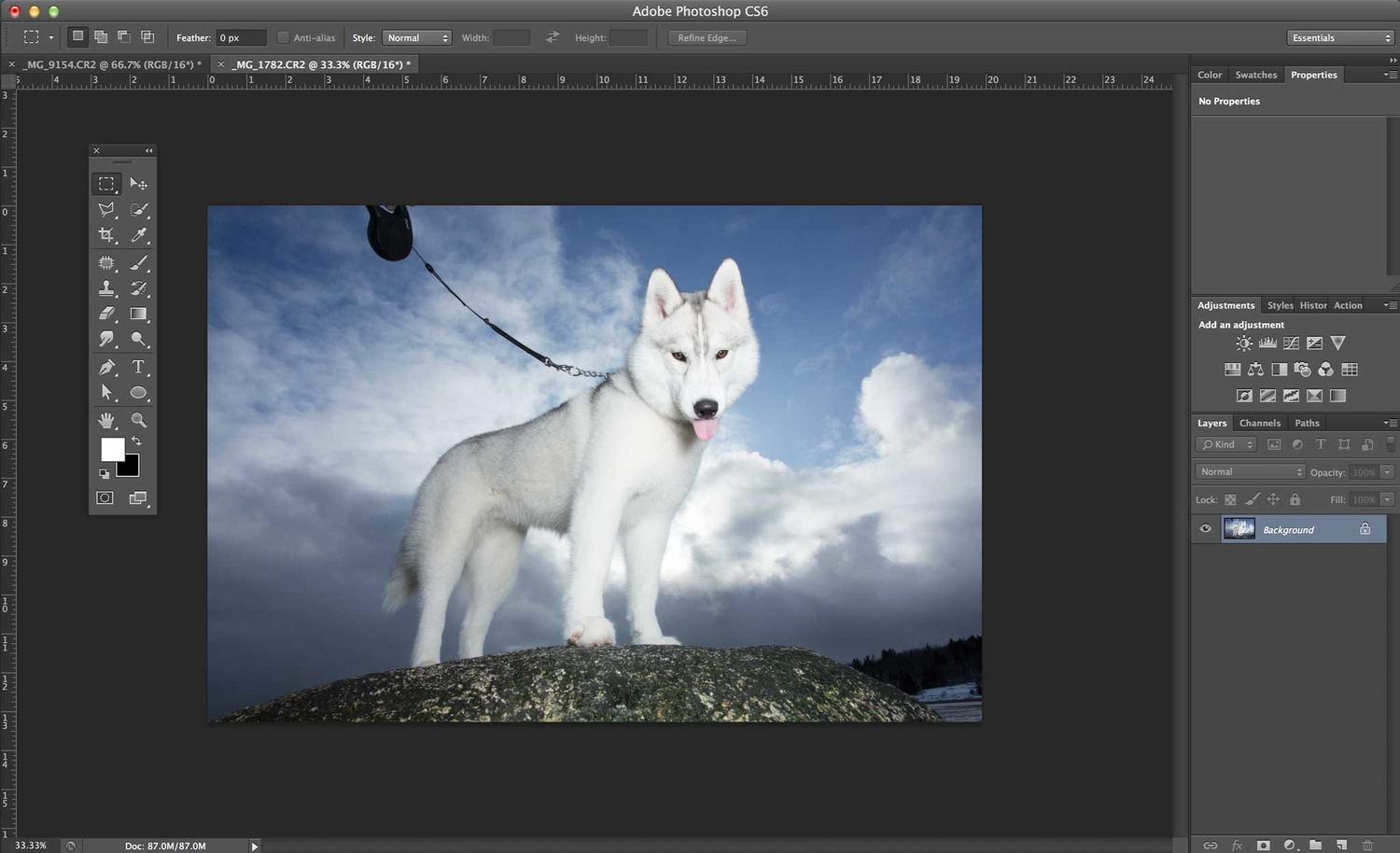 remove dog leashes in Photoshop - Step 1