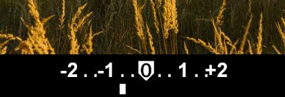 Camera light meter indicator