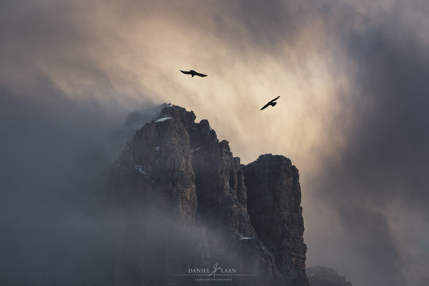 Two alpine choughs chasing each other in swirling mists.