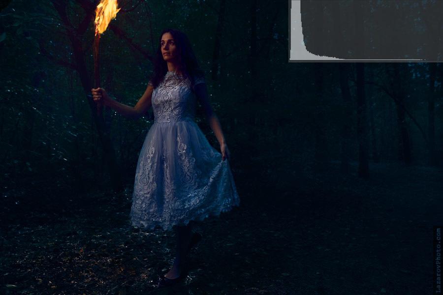 Through the forest (darker version)