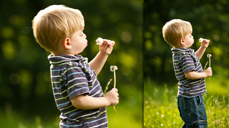 Little boy with a dandelion