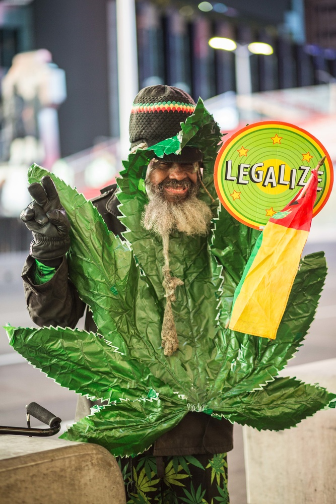 A man wearing a marijuana costume