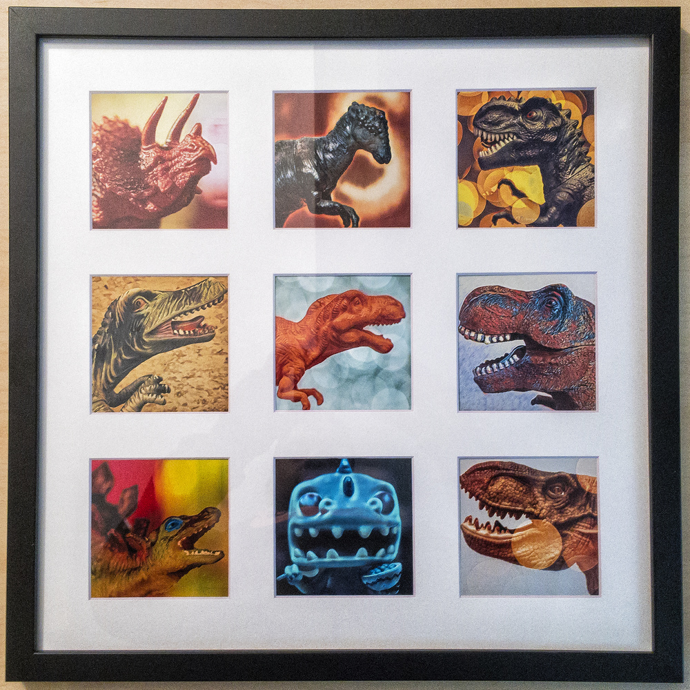 The printed and framed collection of dinosaur images.