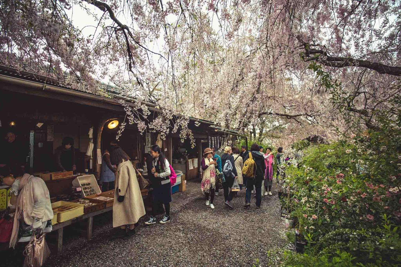 Haratanien Blossom Garden