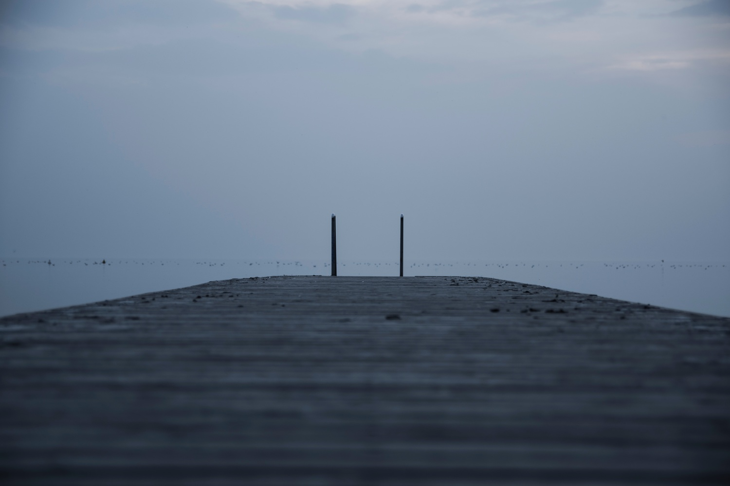 an ant's eye view looking out to the water from of a dock on a gloomy, foggy day
