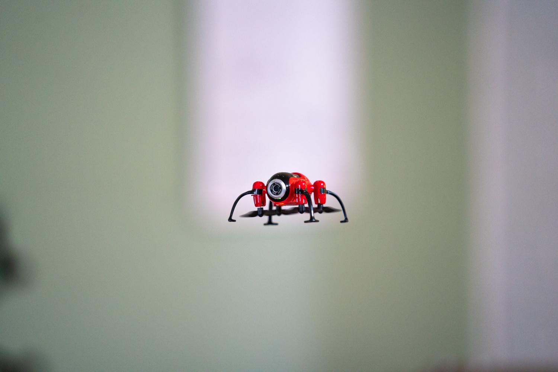 Kolibri Torpedo