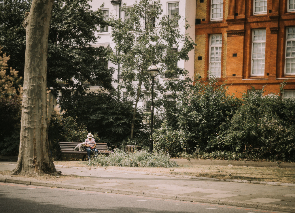 A man and his dog sat on a bench in London
