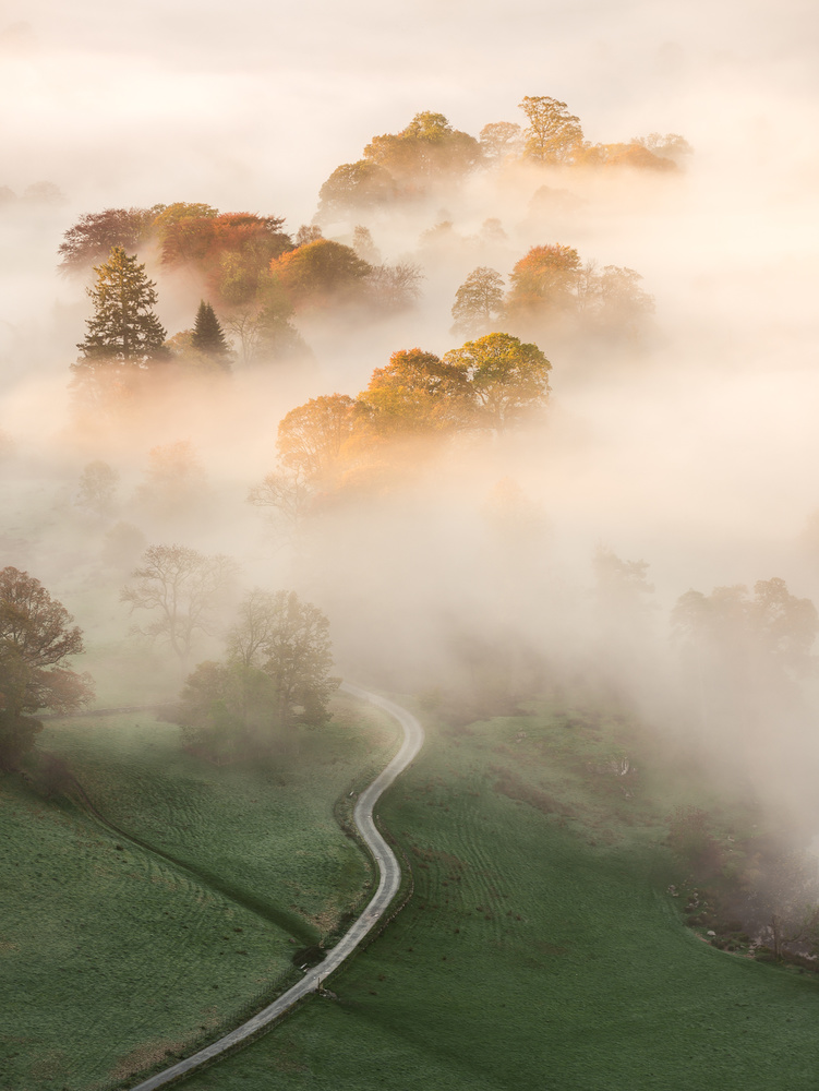 Photo of morning mist