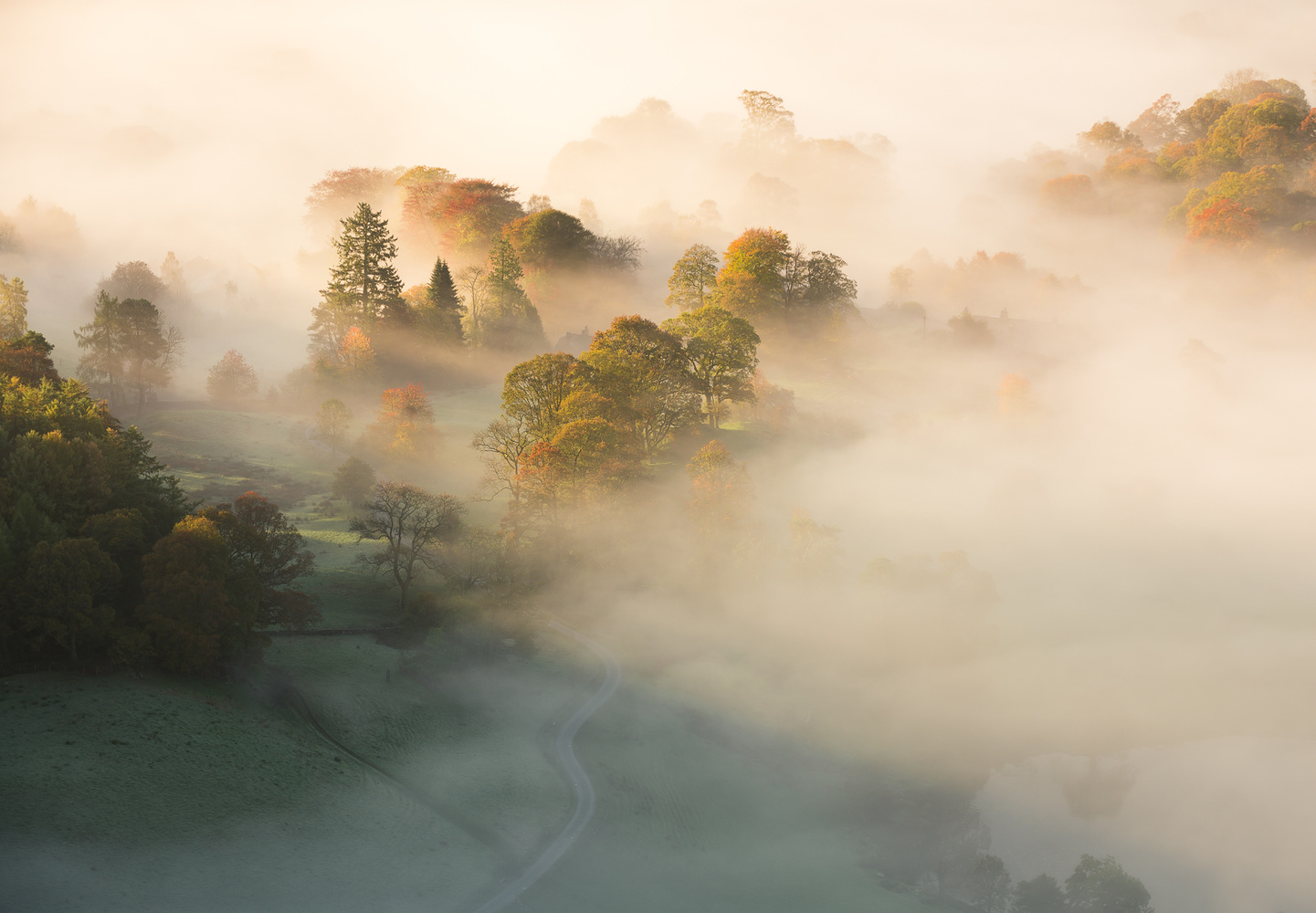 Morning mist in the lake district