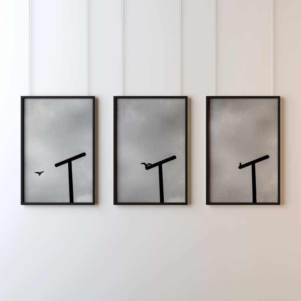 A triptych of monochrome photographs on a white wall