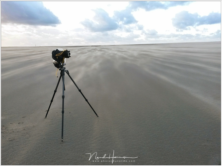 Standing firm in a storm. Two legs into the wind, one with the wind brings mist stability. But never leave the tripod alone.