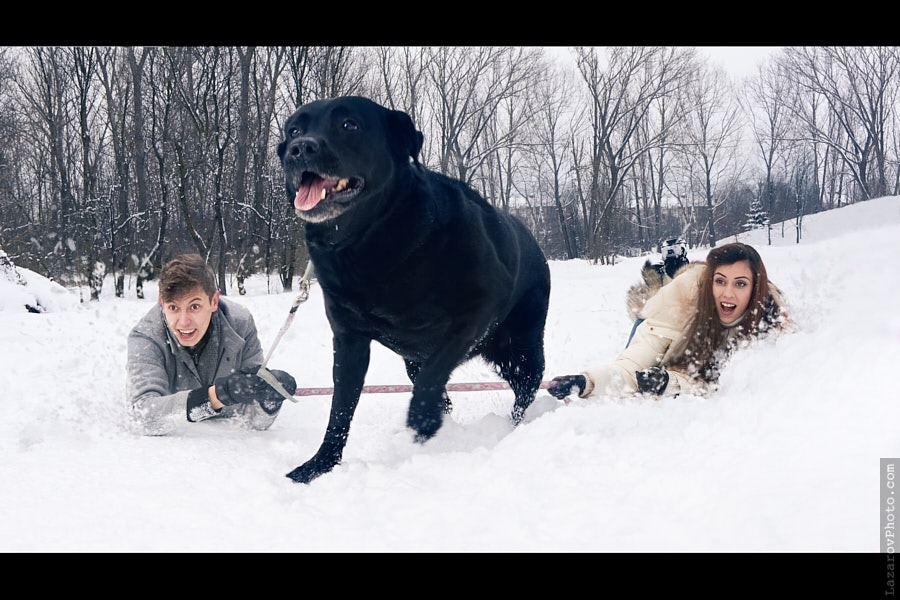 Dog walking - a creative family portrait