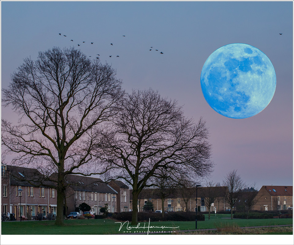 In January 2018 there was a blue super moon, something really special and rare according to the media. I had to rely on Photoshop to make the Moon really blue and super large. Both images are taken right after each other, the foreground setting with 100mm
