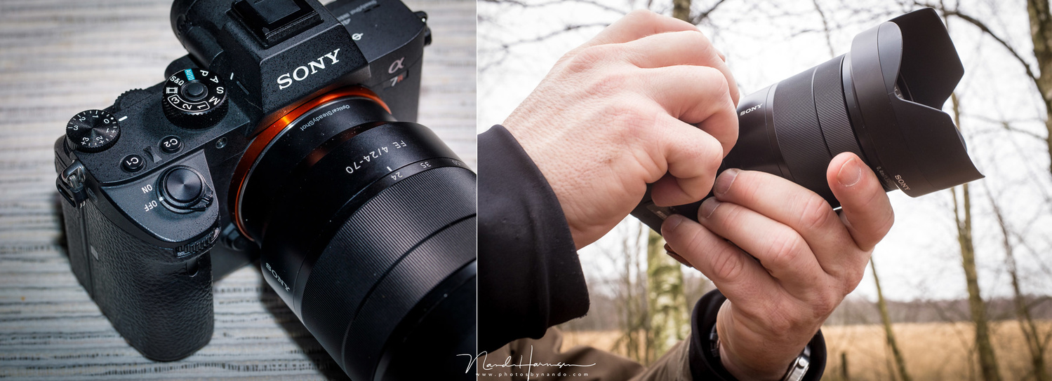 Real Life Comparison of the Sony a7R III, the Nikon Z 7, and