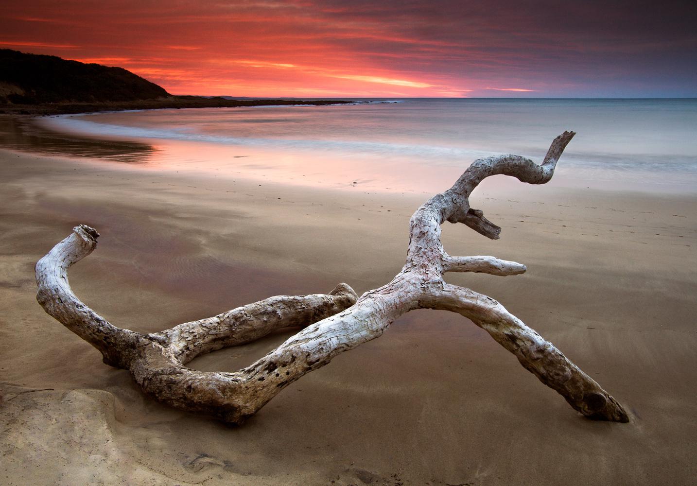 Landscape formula - Seascape