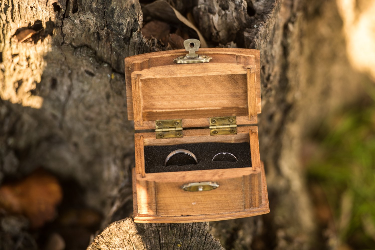 A photo of wedding rings sitting in a box on a tree stump