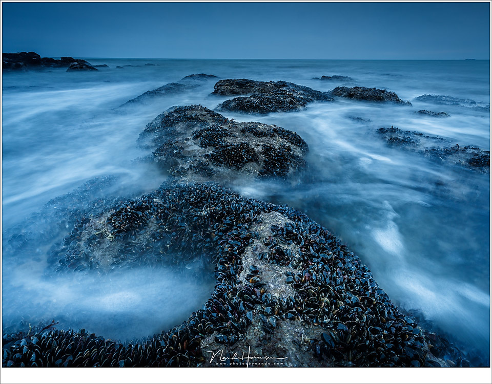 A mussel bed at the Opal Coast during twilight. I did not want an exposure time that was too long - it became low tide and the water wasn't that wild. Because of the evening twilight I did not need any ND filter at all. (EOS 5D mark IV + EF16-35L @ 16mm |