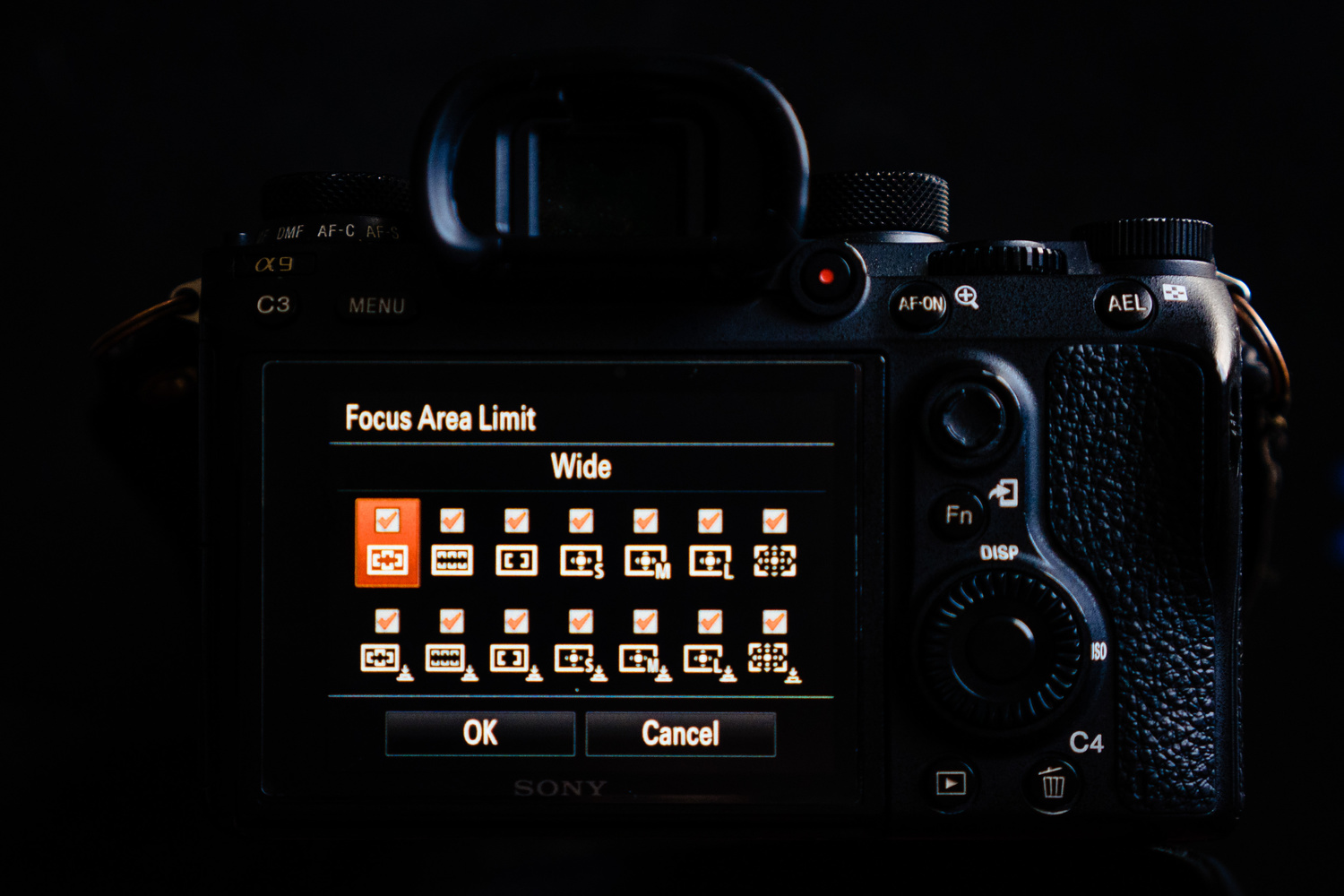 Sony a9 Firmware Update 5 0: What I Love and What's Still Missing