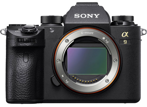 The Sony a9. Its first iteration was something of a game-changer. The Mark II will almost certainly pack much less of a punch.