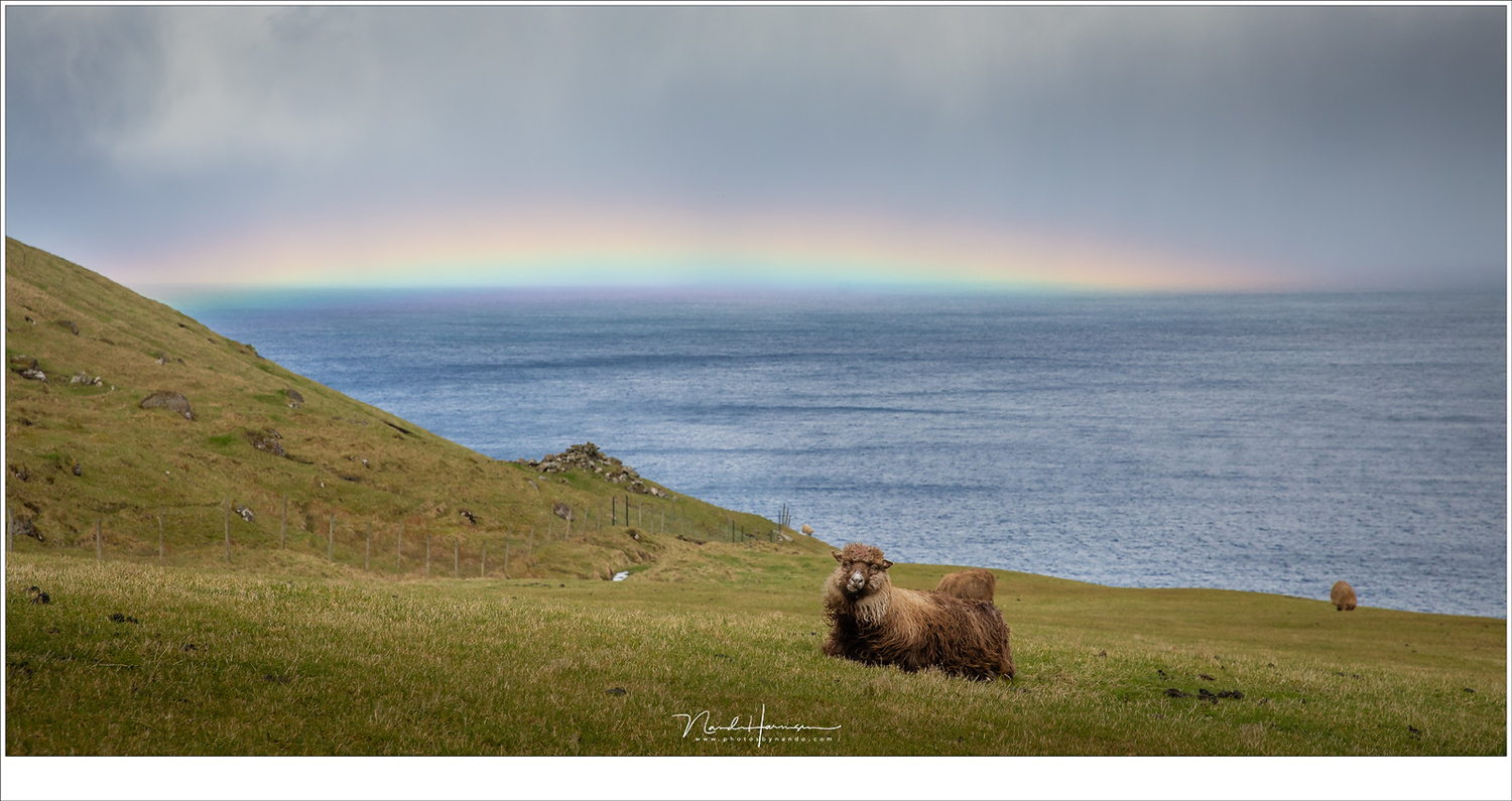 Take a picture of the rainbow and then you can take your time to search for a nice composition. I managed to capture one, together with one of the many sheep at the Faroe Islands. (Canon EOS 5D4 with 70mm | ISO400 | f/8 | 1/800)