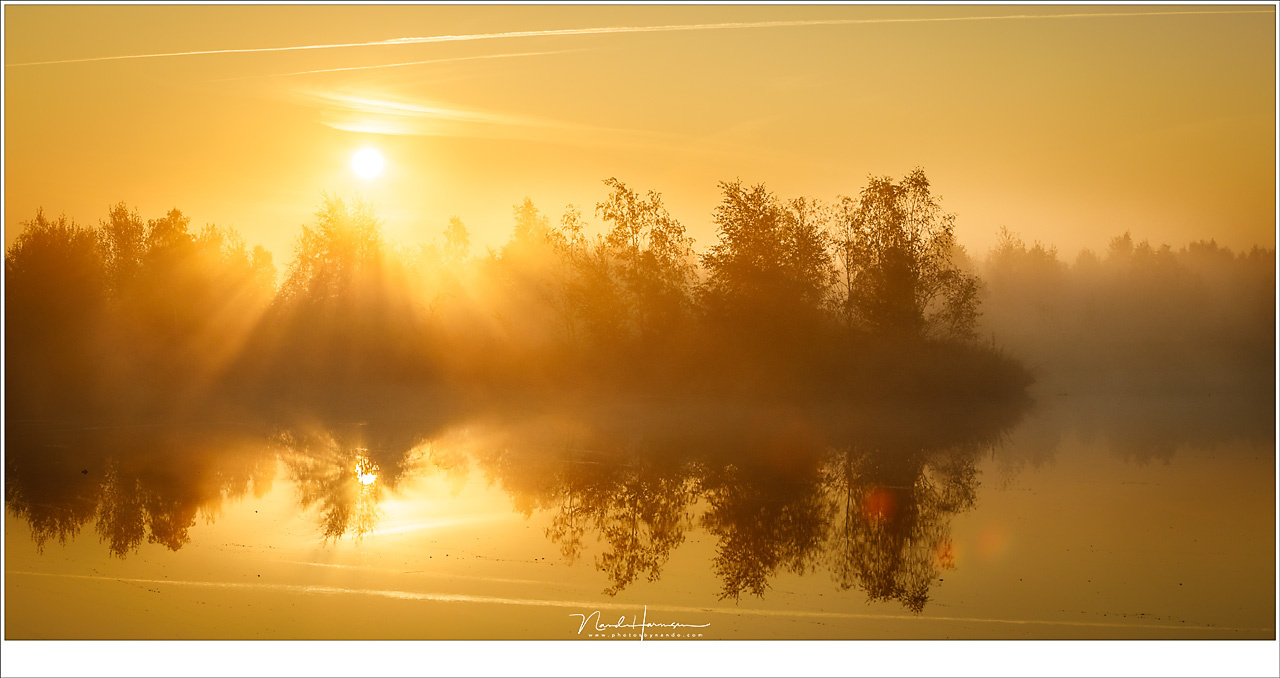 A perfect sunrise, with an almost cloudless sky and fog. This is what we all want in a landscape. But there is more than this (Canon EOS 5D4 + 70mm | ISO100 | f/11 | 1/400)