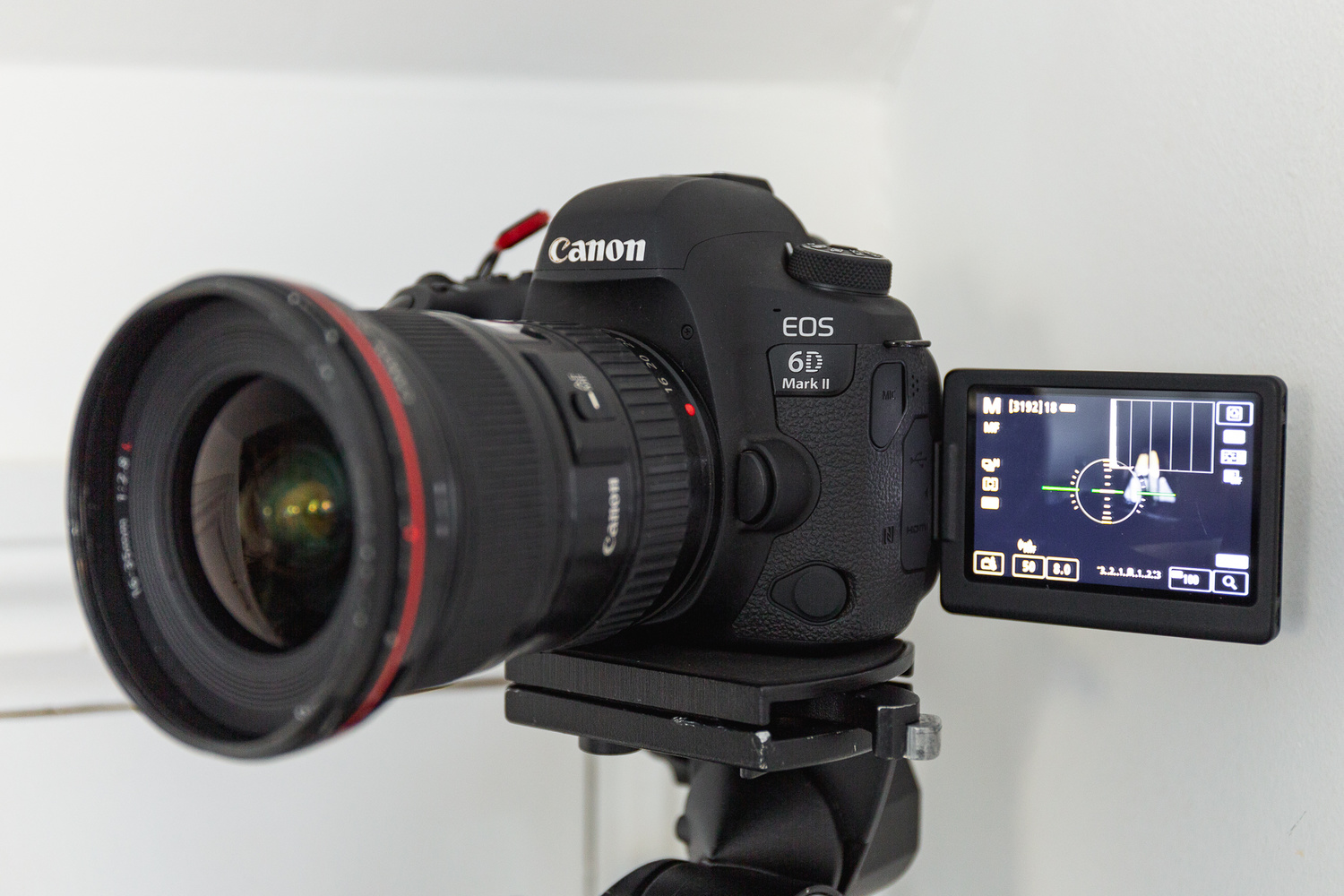the Canon 6D MKII with vari-angle LCD screen on a Manfrotto Geared Tripod Head