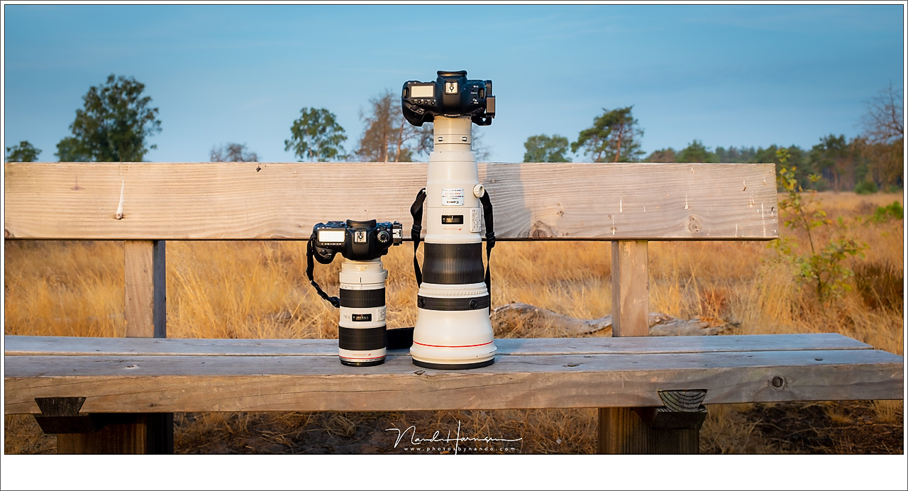 The EF 800mm f/5,6L lens next to the EF70-200mm f/2,8L lens, both without lens hood. It brings things in perspective, doesn't it?