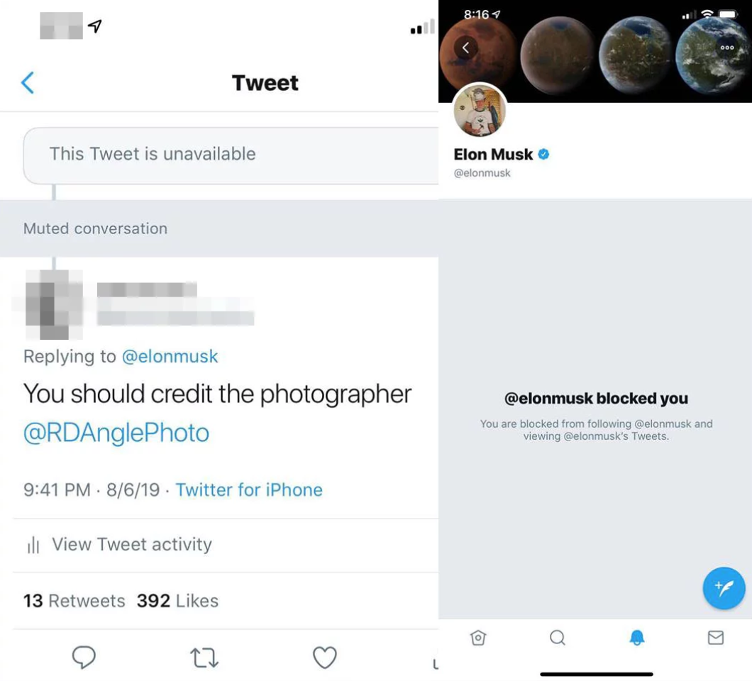 Elon Musk Uses Image Without Permission or Credit, Begins