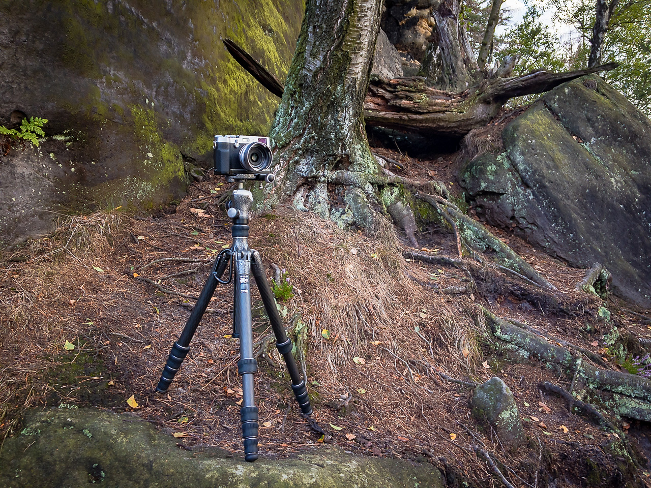 After careful consideration I decided to buy another Gitzo tripod; the GT1555T. It is expensive, but the quality is so much better compared to the 3LT. The question is; is it worth the money. I used it for over a year now, and it is time to make a judgeme
