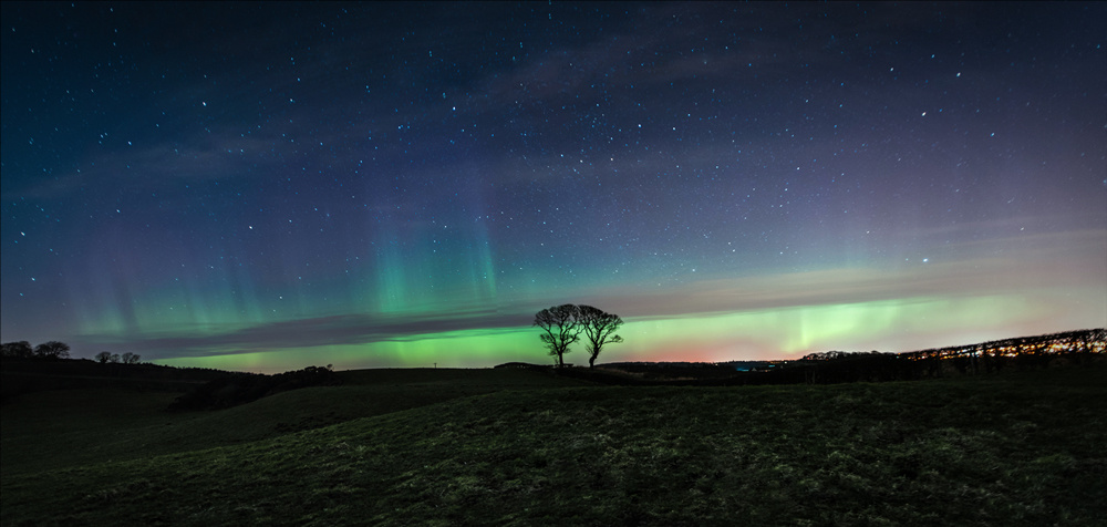 aurora borealis over the Kissing Trees in Scotland